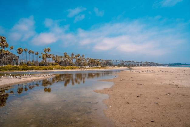 Panoramiczny widok na plażę santa barbara latem i palmy w kalifornii. stany zjednoczone