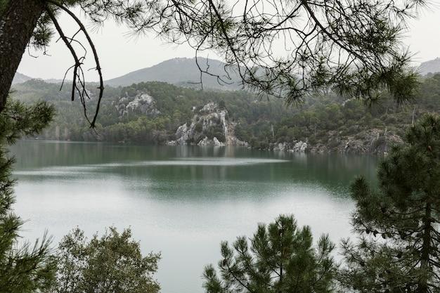 Panoramiczny widok na przyrodę
