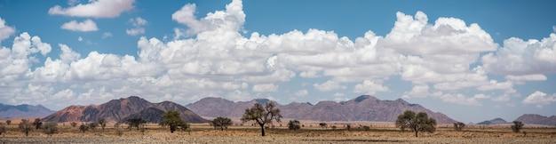 Panoramiczny widok na pustynię namib w namibii