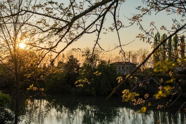 Panoramiczny widok na staw o zachodzie słońca na wiosnę