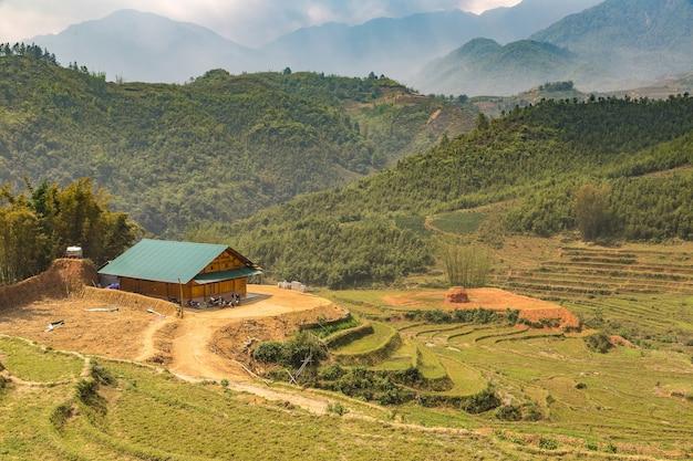 Panoramiczny widok na tarasowe pole ryżowe w wietnamie sapa lao cai