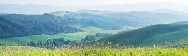 Panoramiczny widok na zielone letnie wzgórza w wieczornej mgle