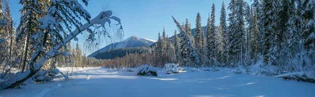 Panoramiczny widok na zimowy krajobraz górski