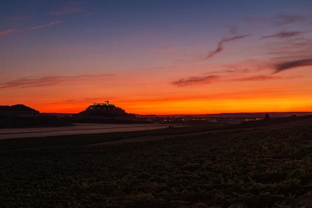 Panoramiczny widok winnic i pól uprawnych o zmierzchu w ribera del duero w hiszpanii
