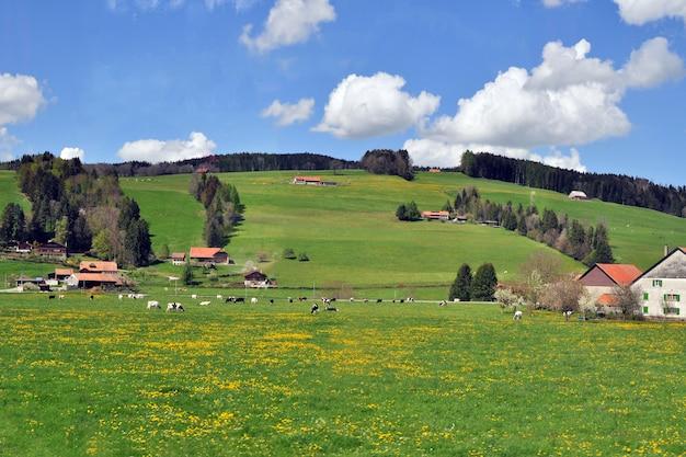 Panoramiczny widok wsi świeże zielone wzgórza na wiosnę