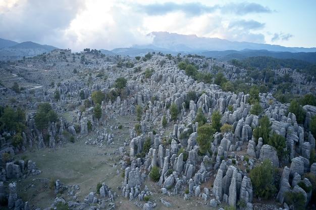 Panoramiczny widok z lotu ptaka na dolinę z majestatycznymi formacjami skalnymi. widok z góry na skaliste kolumny i zielony las w tle