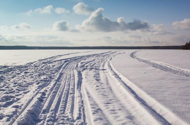 Panoramiczny widok zimy krajobraz z polem śnieg i las na horyzoncie w pogodnym mroźnym dniu.