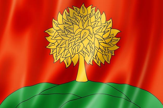 Państwo lipieck - obwód - flaga, rosja macha kolekcja transparentu. ilustracja 3d
