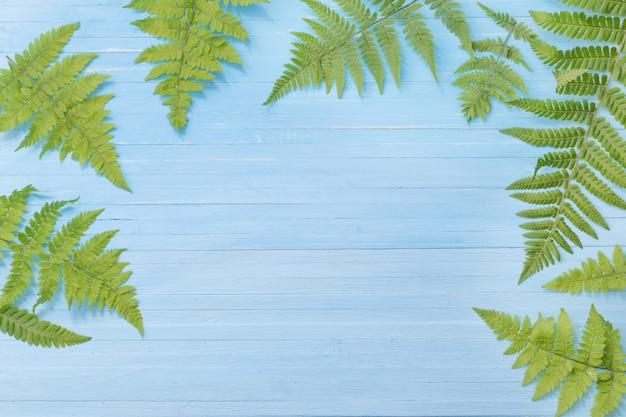 Paproć opuszcza na błękitnym drewnianym tle