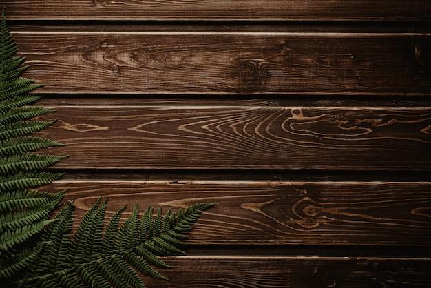 Paproć zielony leży na ciemnym tle drewnianych