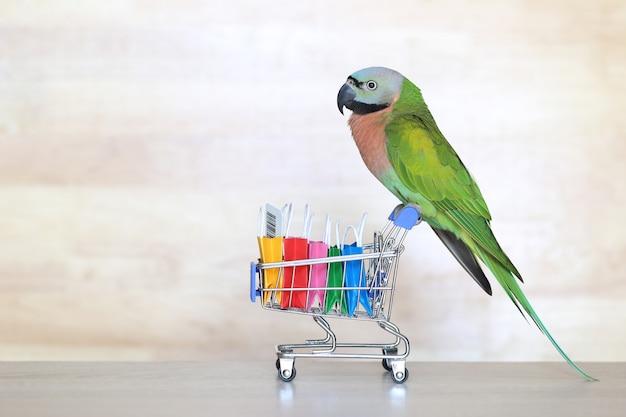 Papuga na miniaturowym modelu koszyka i torba na zakupy na drewnie