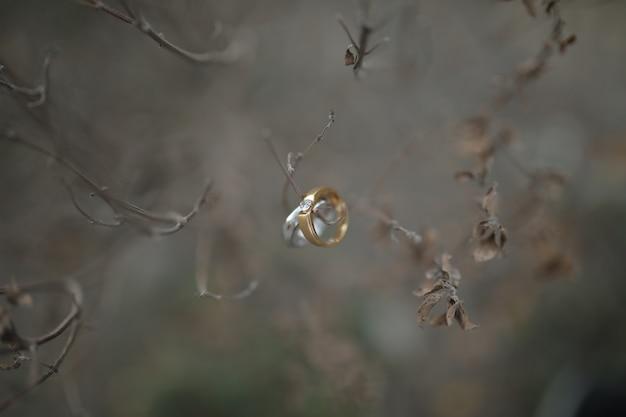 Para pierścieni