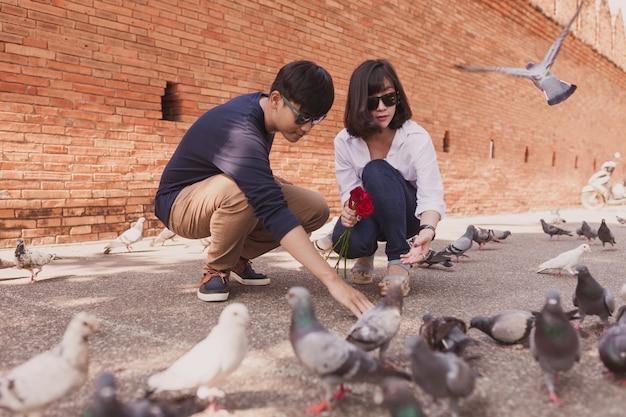 Para przyczajony patrząc na gołębie