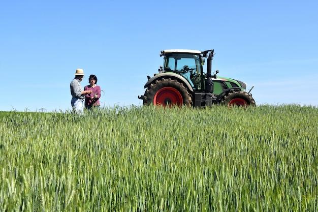 Para rolnicy w pszenicznym polu z ciągnikiem