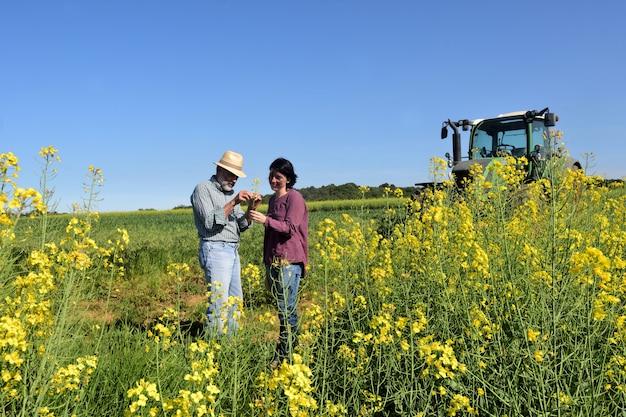 Para rolników w polu rzepaku z ciągnikiem