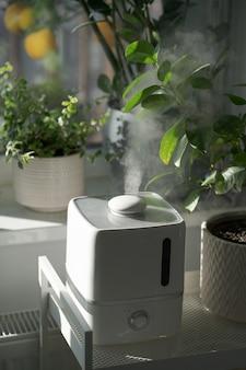 Para z nawilżacza nawilża suche powietrze otoczone roślinami doniczkowymi pielęgnacja roślin w ogrodzie domowym