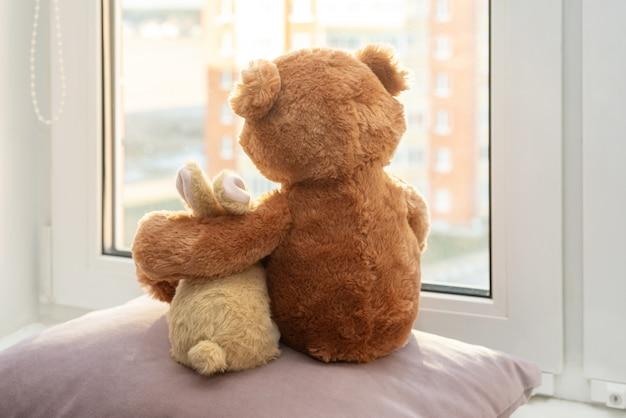 Para zabawek. królik i miś obejmująca kochająca zabawka pluszowa i króliczek siedzący i patrzący w okna