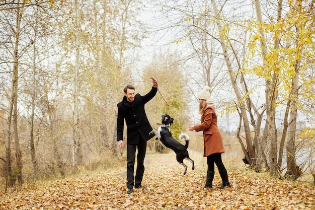 Para zakochanych w ciepły jesienny dzień spaceruje po parku z wesołym psem spanielem. miłość i czułość między mężczyzną a kobietą. walentynki dla wszystkich miłośników