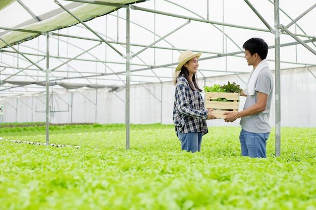 Para zbierająca razem hydroponiczne warzywa na farmie