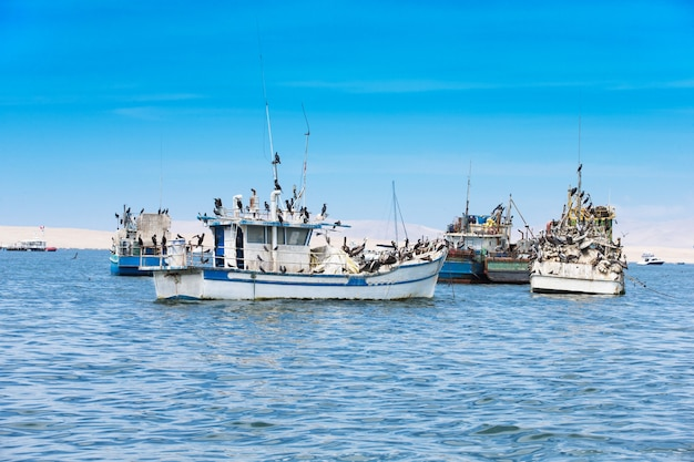 Paracas, peru, łódź rybacka w regionie islas ballestas
