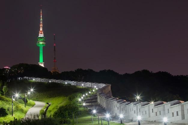 Park and tower at night w korei południowej