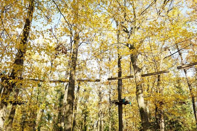 Park dla wspinaczy w jesiennym lesie