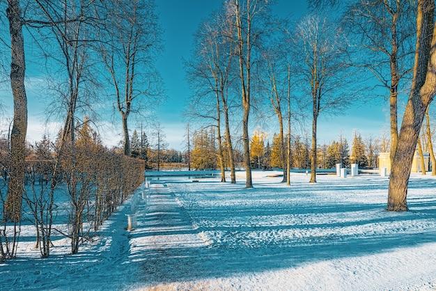 Park katarzyny w pobliżu pałacu o tej samej nazwie, carskie sioło (puszkin). sankt petersburg. rosja.