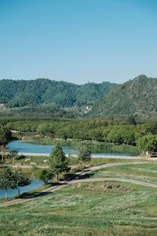Park leśny, rzeka i błękitne niebo