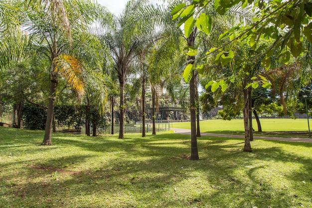 Park miejski ribeirao preto, znany również jako dr. luis carlos raya