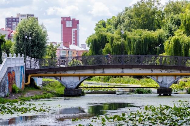 Park miejski z rzeką i mostem latem