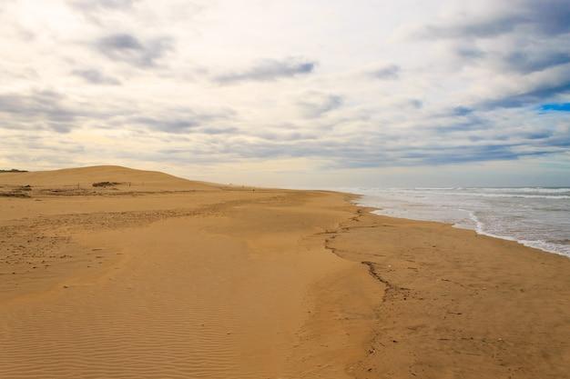 Park narodowy addo elephant national park krajobraz morski. wydmy na wybrzeżu. afrykańska panorama, rpa