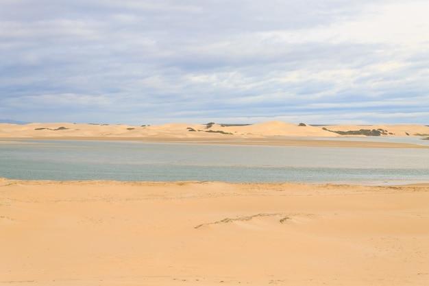 Park narodowy addo elephant national park krajobraz morski