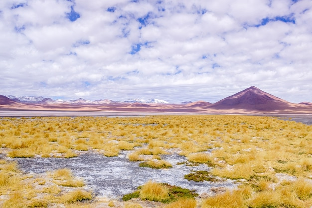 Park narodowy eduardo avaroa w lagunie kolorado