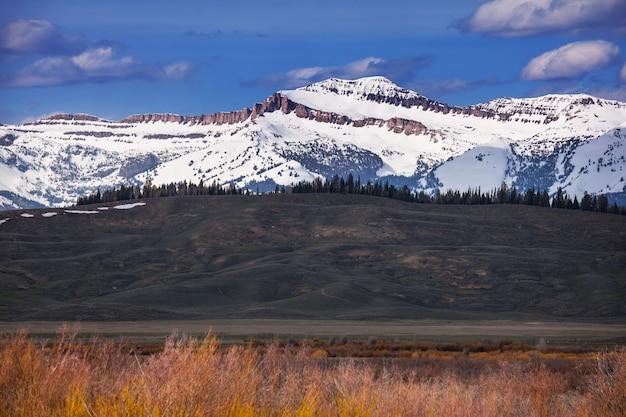 Park narodowy grand teton, wyoming, usa. filtr na instagramie.