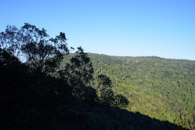Park narodowy khaoyai nakhon