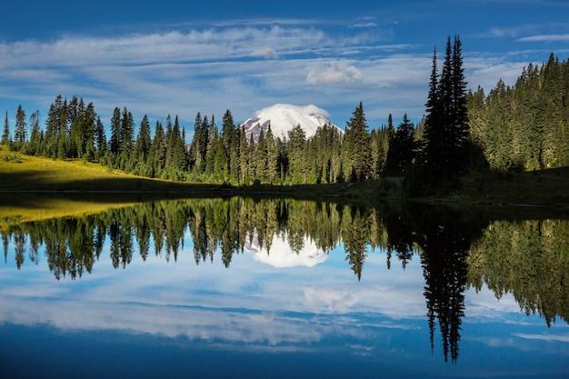 Park narodowy mount rainier, waszyngton