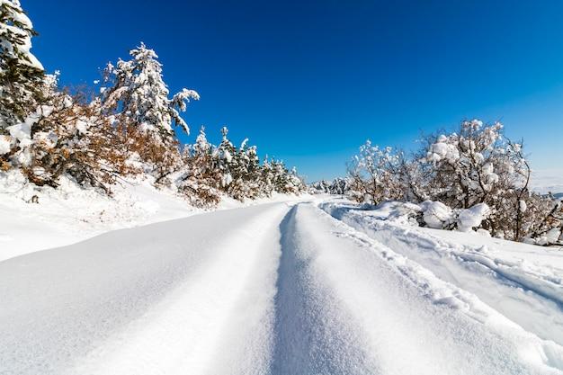 Park narodowy soguksu, zima, śnieg, las, kizilcahamam, ankara