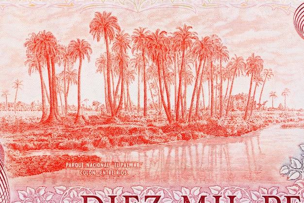Park narodowy ze starych argentyńskich pieniędzy