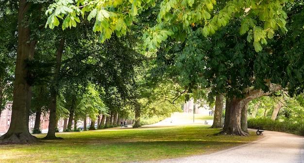Park z obciętą trawą starego europejskiego miasta