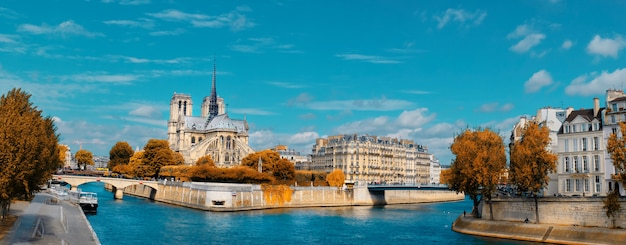 Paryż, panorama nad sekwaną z katedrą notre-dame w fal