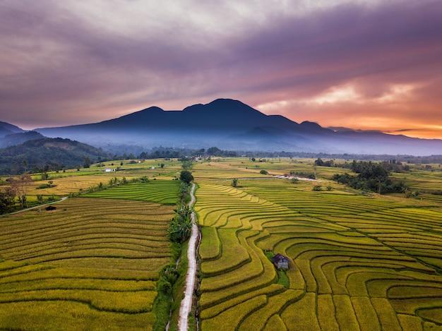Pasma górskie i pola ryżowe rano