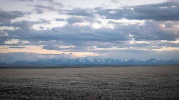 Pasmo górskie podczas zachodu słońca z polem na pierwszym planie, w południowej albercie, kanada