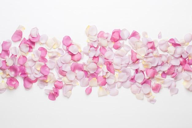 Pastelowe płatki kwiatów róży na białym tle. leżał na płasko, widok z góry, miejsce na kopię.