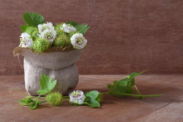 Pasyjne kwiat i pasyjne owoc w tkaniny torbie na drewnianym tle.