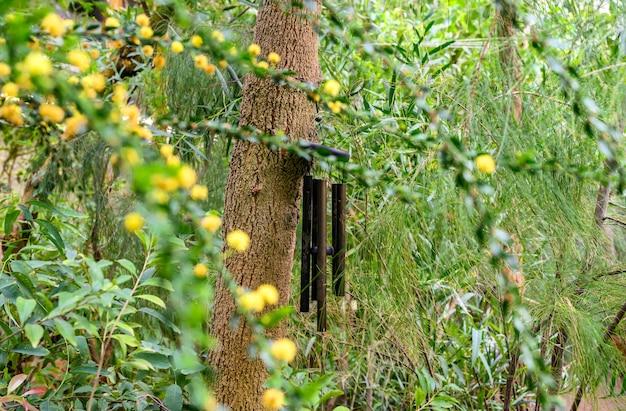 Patyczki bambusowe. dzwon. dzwonek wiatrowy. dzwonki wiatrowe golden wind chimes - wiszące dzwonki wiatrowe