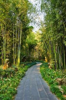 Pawilon wangjiang w parku wangjianglou. chengdu, syczuan, chiny