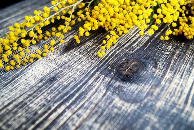 Pęczek mimozy, na rustykalne drewniane tła, widok z góry stołu