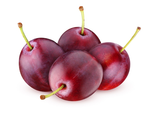 Pęczek śliwek na białym tle na białym tle. całe dojrzałe fioletowe jagody.