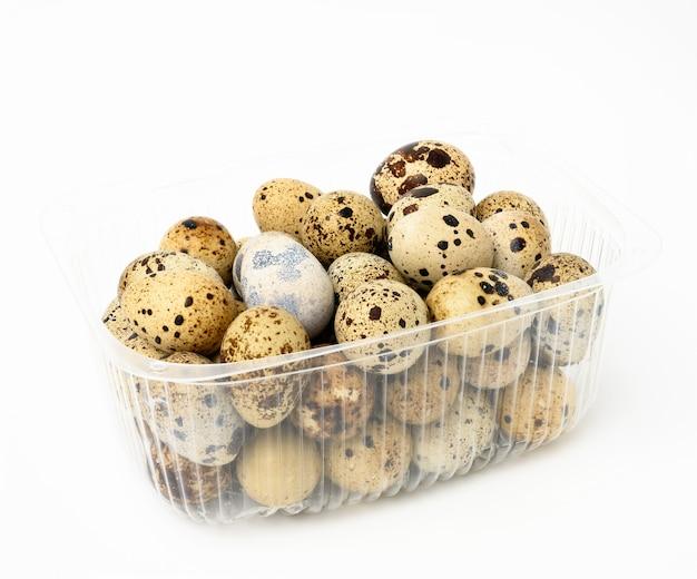Pęczek surowych jaj przepiórczych w plastikowym przezroczystym pojemniku na białym tle, dietetyczne jedzenie