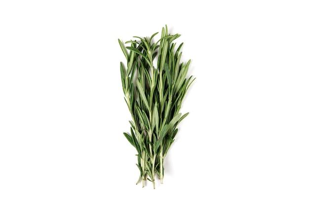 Pęczek świeżego rozmarynu zielony na białym tle.